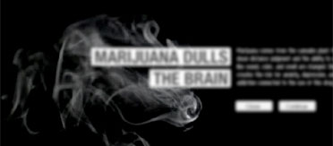 marijuana dulls the brain